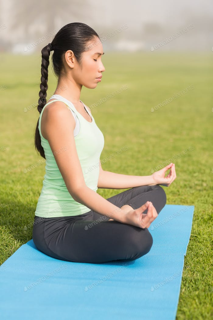 Peaceful sporty woman meditating in parkland