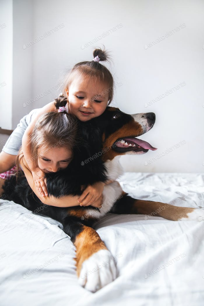 little girl In the bed stoey playing with a dog. animals, recreation, game, family
