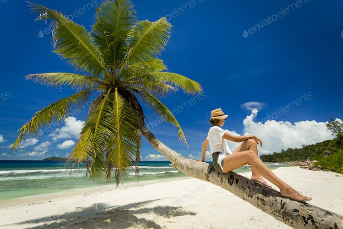 Relaxing On Palmtree