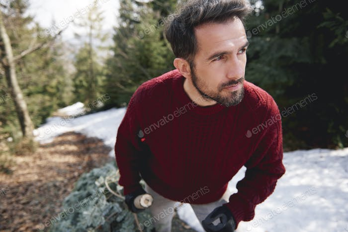 Close up of man carrying the Christmas tree