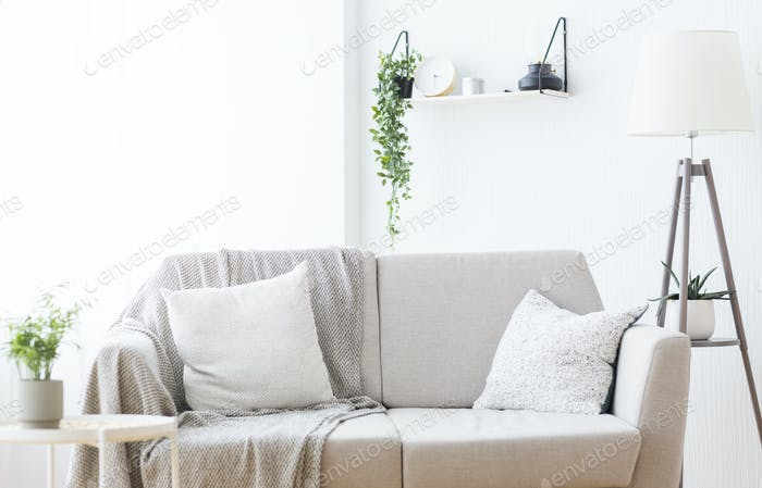 Modern light couch at living room interior, empty space