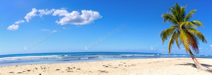 Sand beach panorama