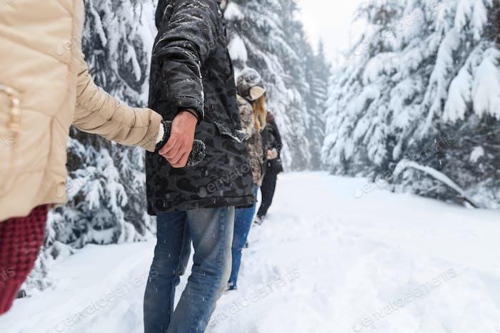 Freunde Gruppe Schnee Wald junge Menschen Wandern Outdoor