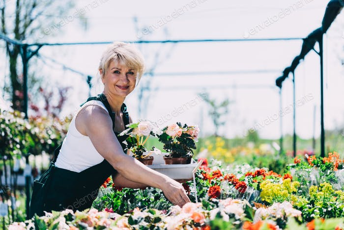 Woman selecting flowers in a gardening center