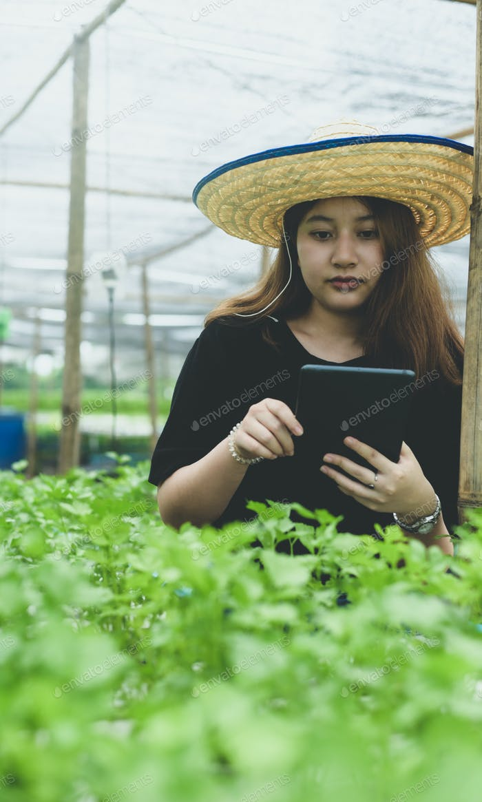 A new generation of female farmers with tablet in the hydroponics plantation in greenhouse.