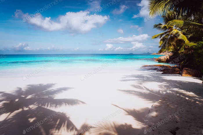 Idyllic perfect tropical dream beach. Powdery white sand, crystal-clear water, summertime vacation