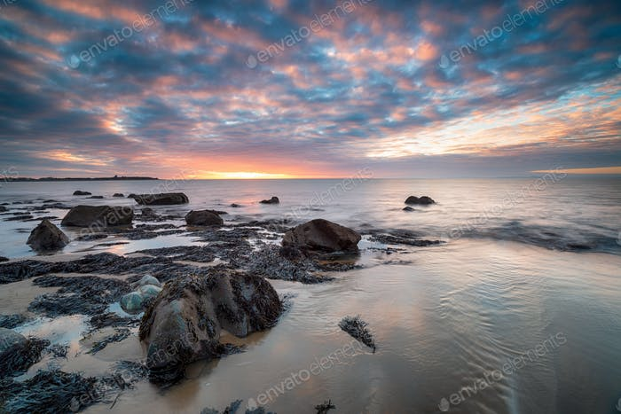 Llandanwg beach 010
