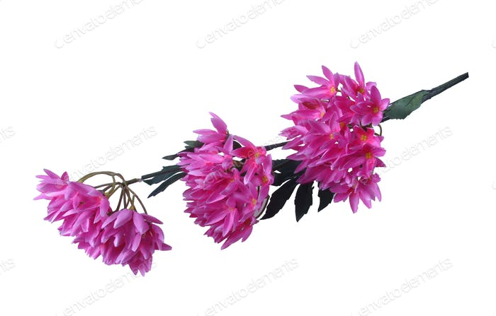 Artificial Summer Flower Isolated