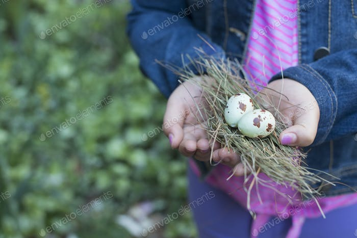 City in spring, girl holding out cupped hands, holding twigs and two bird's eggs,
