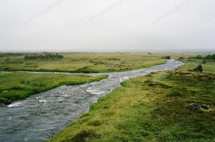 Fluss blühen