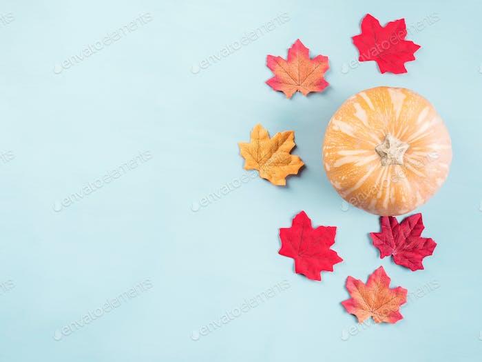 Herbstblätter und Kürbis auf blau