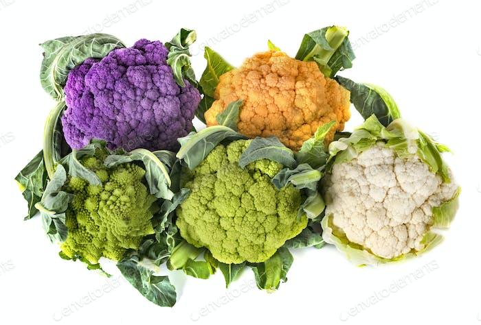 cauliflowers in studio
