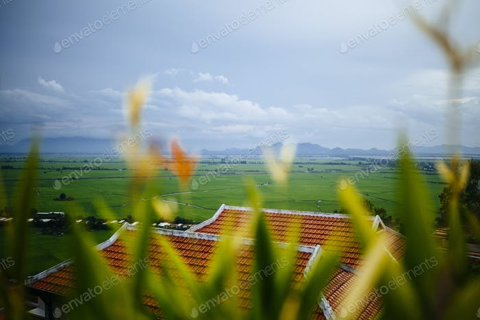 Landscape view with rice paddies and distant mountains.