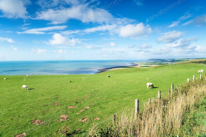 The Welsh Coastline