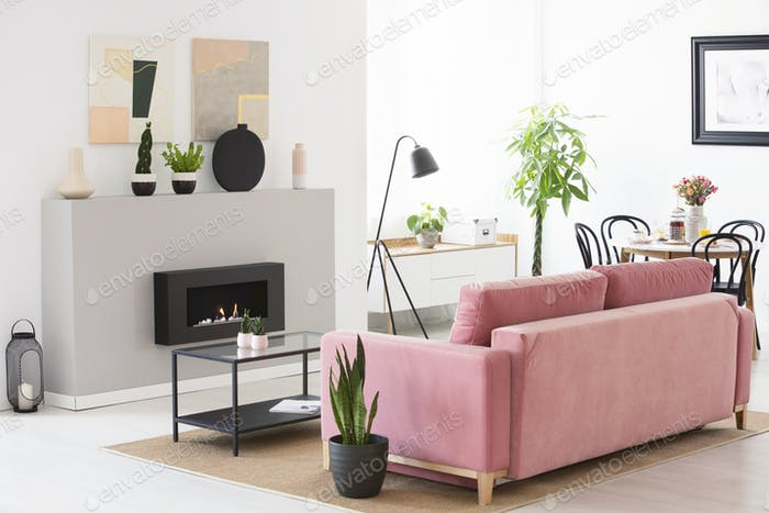 Pink velvet couch standing in real photo of Scandinavian style l