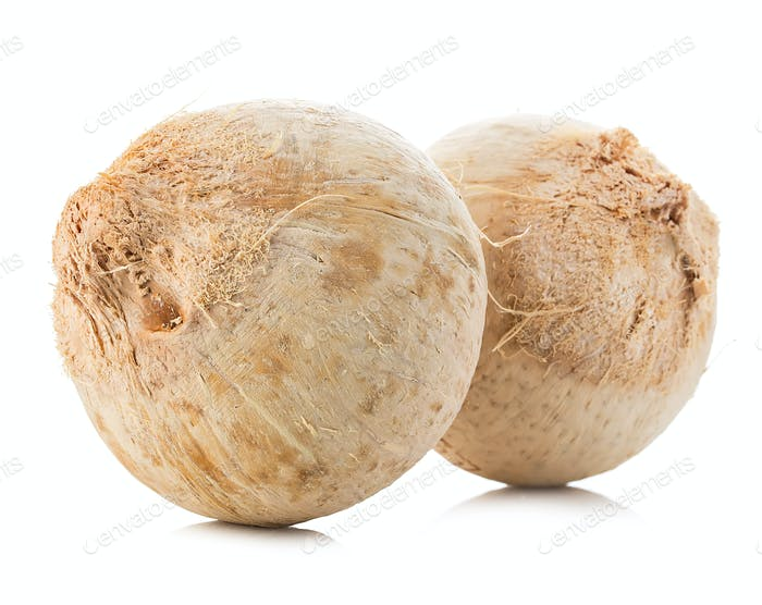Young sweet coconuts close-up isolated on white background.
