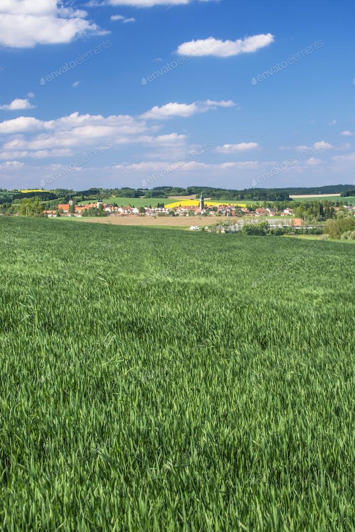 54725,Green wheat fields surrounding town, Prague, Central Bohemia, Czech Republic