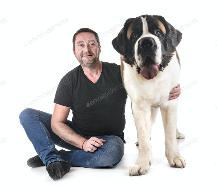 saint bernard and man