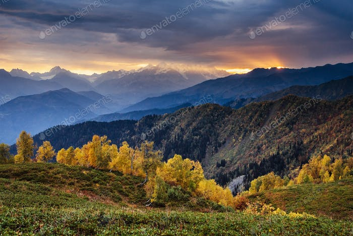 Autumn landscape and snowy mountain peaks. Birch forest in sunlight. Main Caucasian Ridge. Mountain