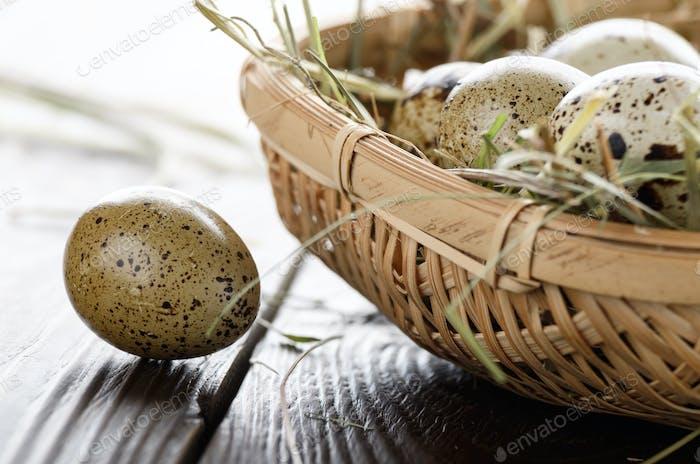 Fresh organic quail eggs in small wicker basket on rustic kitche