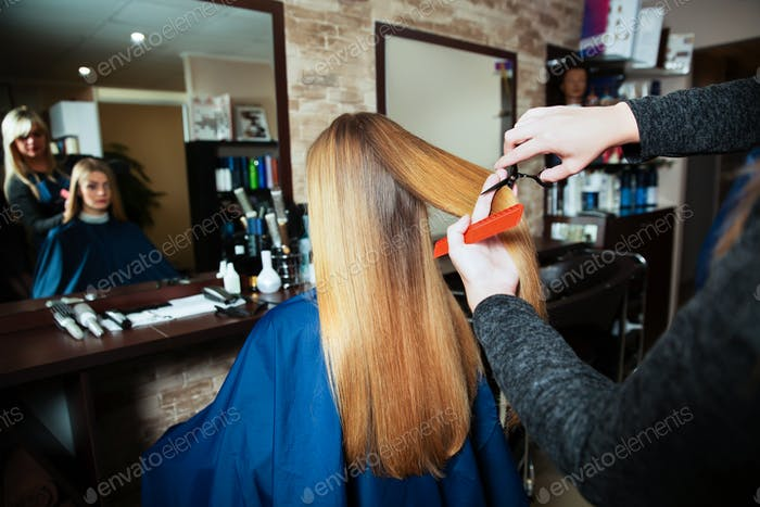 Professional hairdresser cutting hair