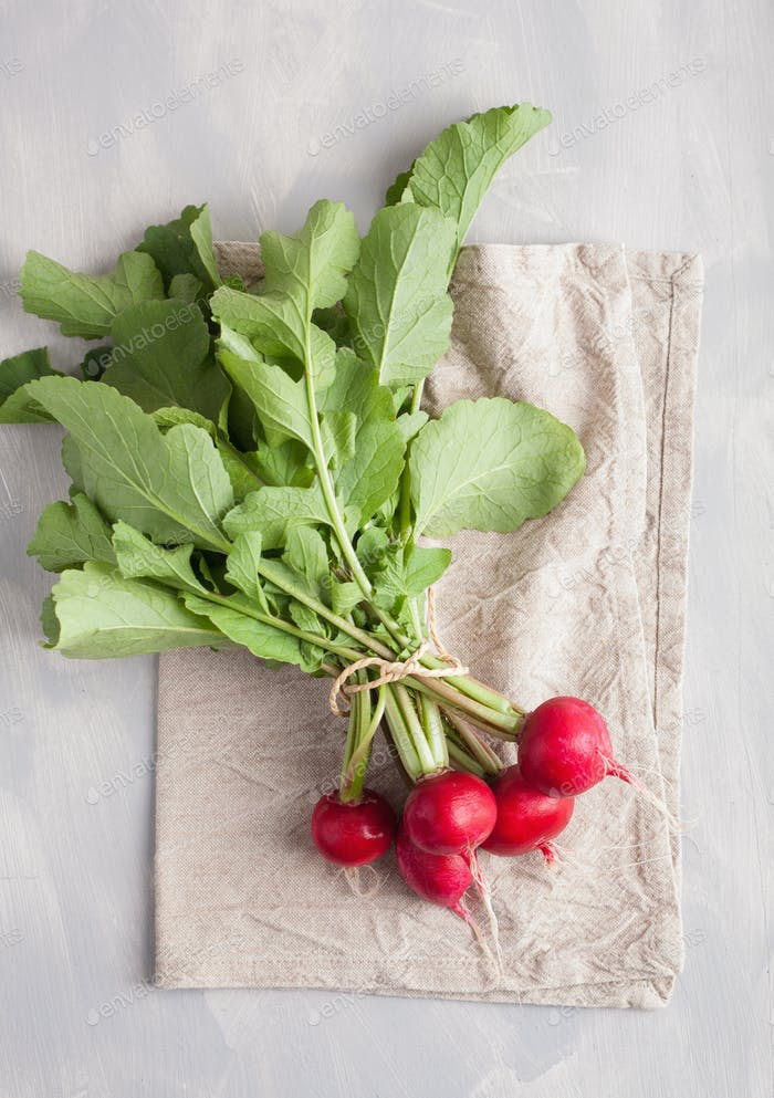fresh raw radish with leaves over gray background