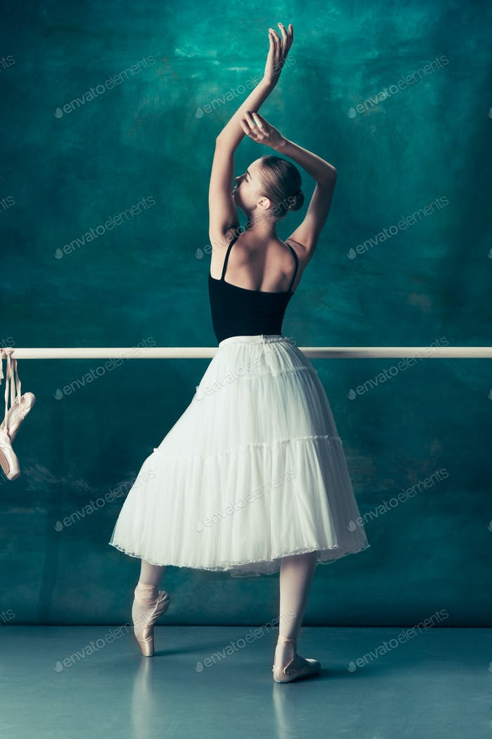 The classic ballerina posing at ballet barre