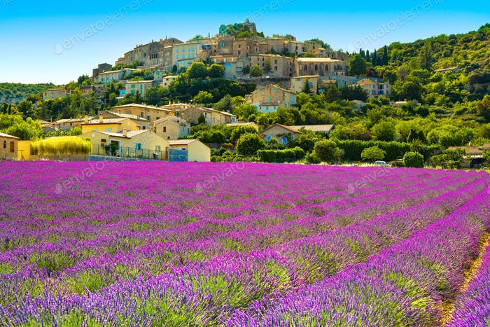 Simiane la Rotonde village and lavender. Provence, France