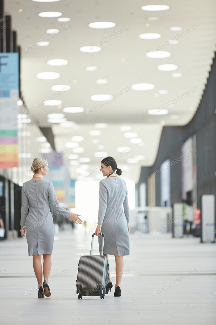 Back View at Flight Attendants in Airport