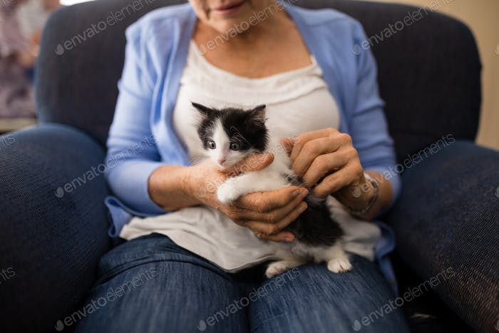 Midsection of senior woman stroking kitten while sitting on armchair