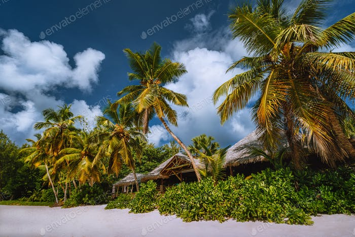 Tropical beach landscape with coconut palm trees and straw roofs. Paradise exotic vacation holidays