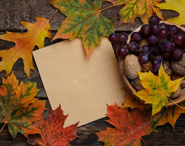 Autumn background with leaves, nut and grape