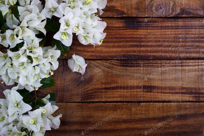 Bougainvillea auf Holzhintergrund