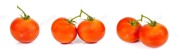 Collection Tomato on white background.