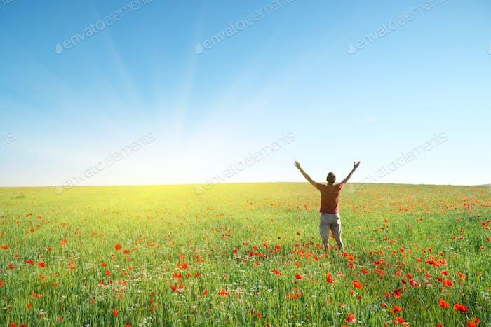 Man in spring meadow of poppy
