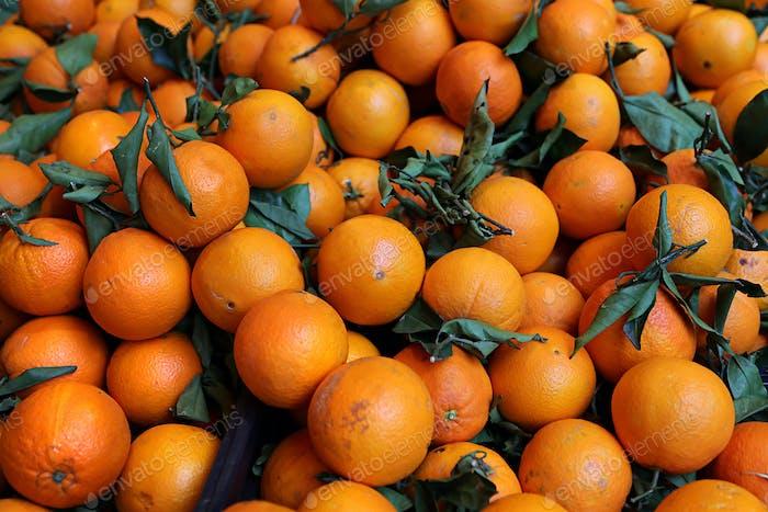 Ripe bright tangerines