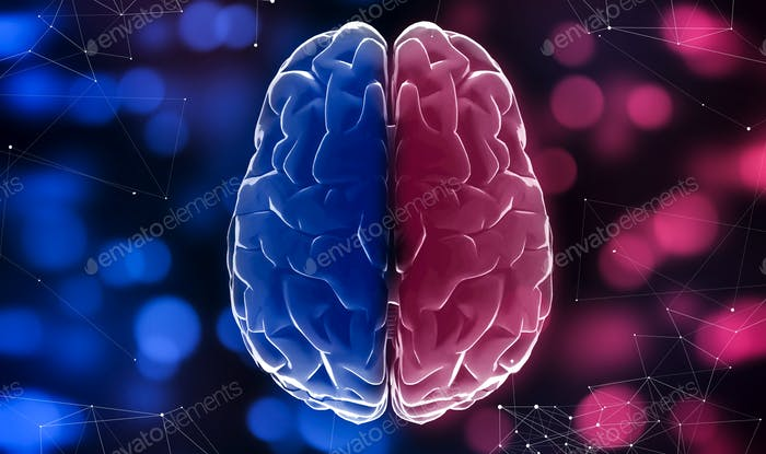 Blue and red halves of brain, blurred lights background, close up