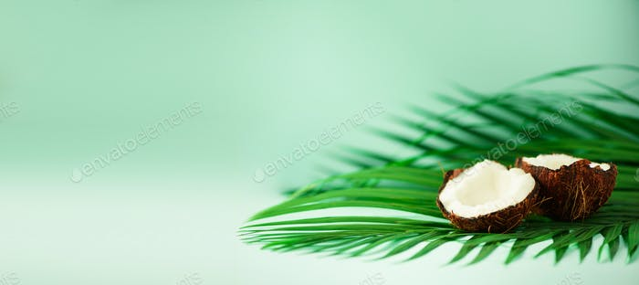 Coconut over tropical green palm leaves on turquoise background. Copy space. Pop art design