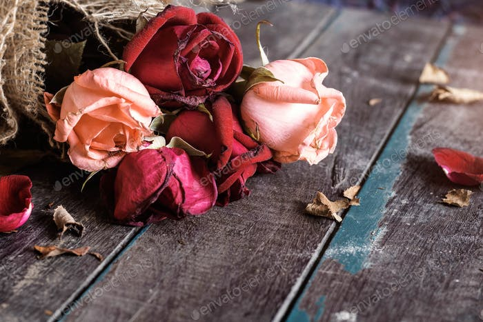 Dry roses on wooden