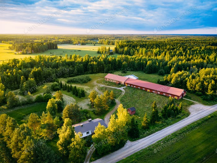 Luftaufnahme des roten Bauernhauses und grünen Sommerwäldern bei Sonnenuntergang
