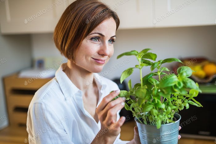 A portrait of young woman standing indoors in kitchen, holding a pot with herbs.