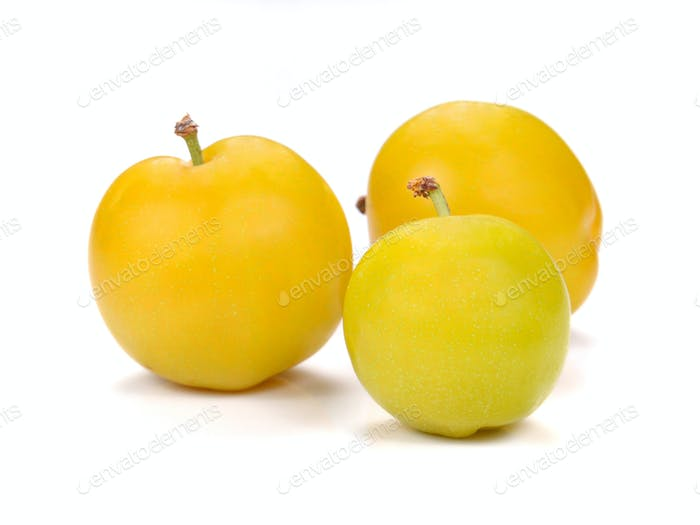 Yellow Ripe plum on white background.