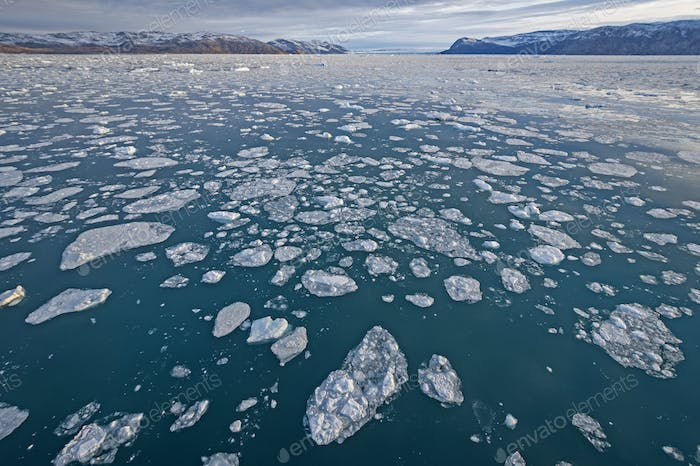 Sea Ice in a Glacial Fjord