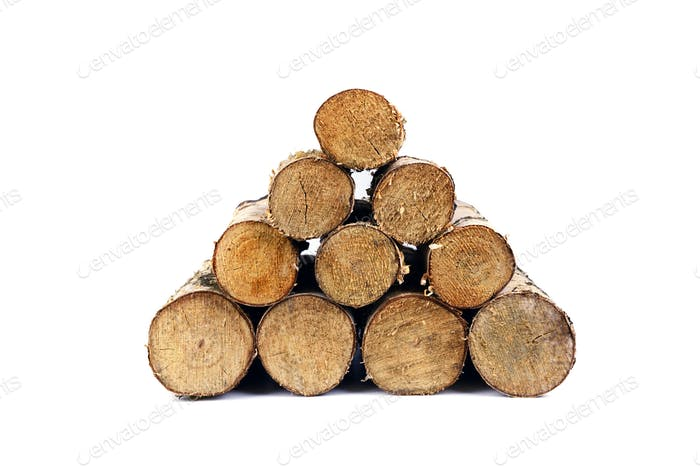Birch firewoods stack isolated