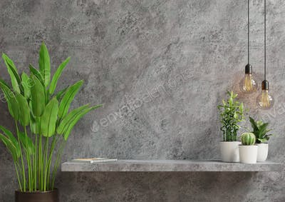 Interior wall mockup with green plant,Cement wall and shelf.