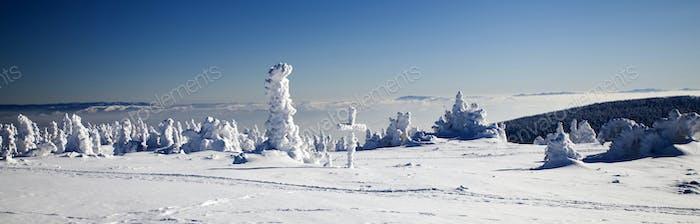 Снег покрытый зимний пейзаж
