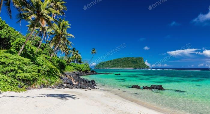Vibrant tropical Lalomanu beach on Samoa Island with coconut pal