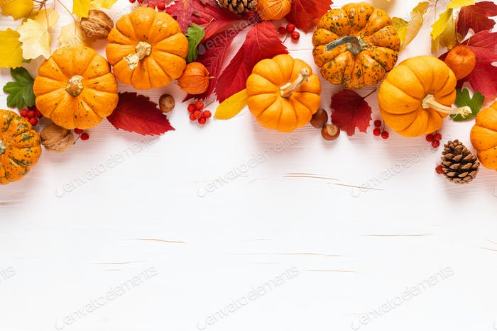 Autumn pumpkins with fall leaves, berries on white background. Thanksgiving day or halloween holiday