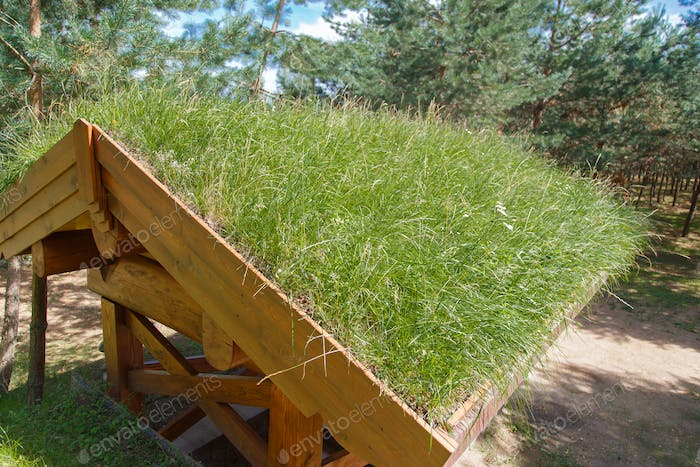 Grass Roof is environmentally friendly