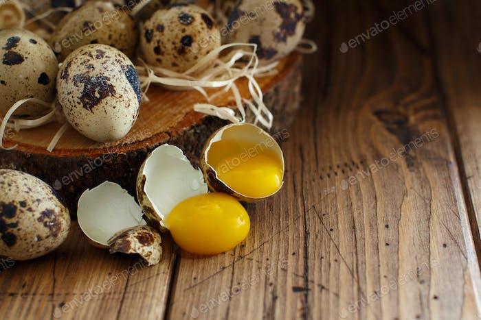 Quail eggs close up